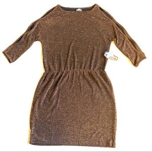 Angie Shimmery Brown Shift Dress
